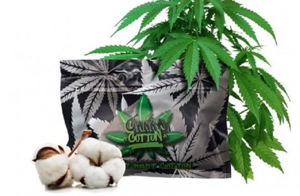 Canna Cotton 10 Gramm